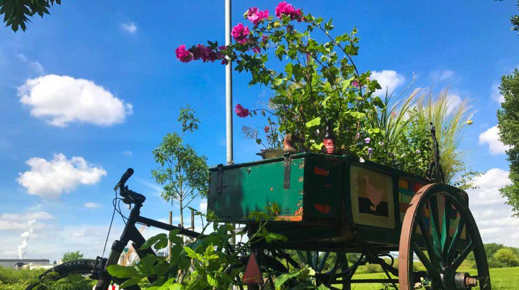 hamnburg auskenner fahrradtour nach kaltehofe