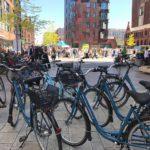 Blaue Fahrrader der Hamburg Auskenner in der Hafencity